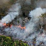 Em discurso na ONU, Bolsonaro nega crise ambiental no Brasil