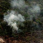 Alertas do Deter tem queda, mas floresta perde quase 1 mil km² em setembro