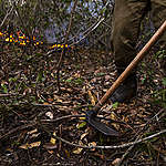 Fogo consome o Pantanal e vidas