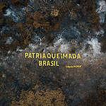 Pátria Queimada Brasil: política incendiária do governo ameaça futuro do país