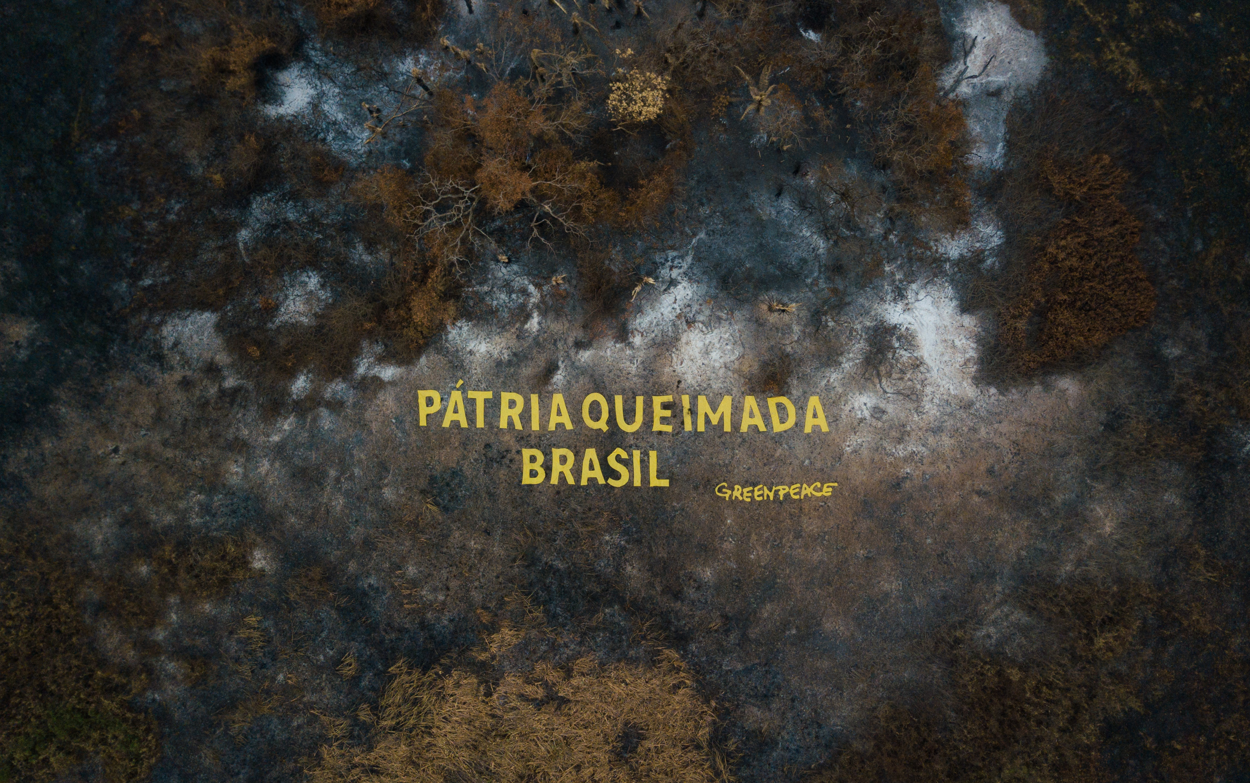 Pátria Queimada Brasil: política incendiária do governo ameaça futuro do país - Greenpeace Brasil