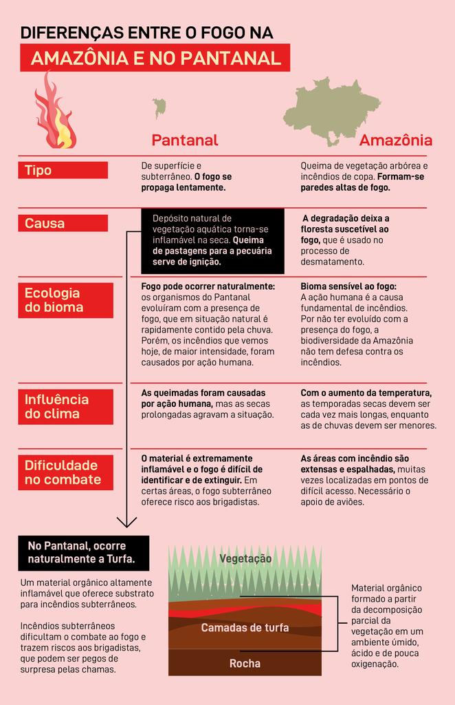 Impressionante e assustador: o que é o incêndio em turfa, que provocou a maior destruição do Pantanal nos últimos 50 anos