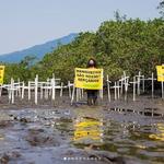 Voluntários seguem na defesa dos biomas e protestam contra ações antiambientalistas