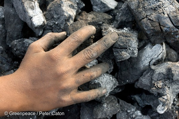 Ръка върху въглищата