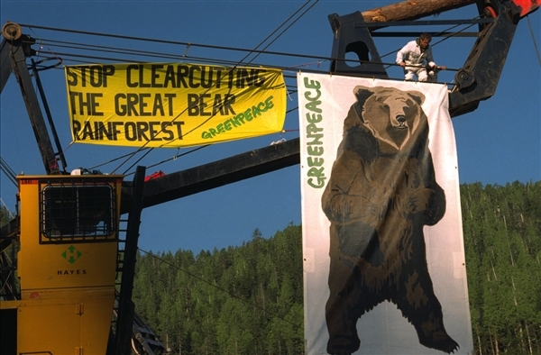 Banners on logging machines. Greenpeace activists occupy logging machines protest against clearcutting of Great Bear rainforest by Western Forest Products.