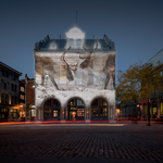Media Advisory: Artistic Projection: Virtual Immersion into the Boreal forest