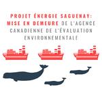 PROJET ÉNERGIE SAGUENAY : Des groupes citoyens et environnementaux mettent en demeure l'Agence canadienne d'évaluation environnementale (ACÉE)