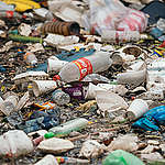 A single-use plastic ban in Canada? Let's hold the feds to it!