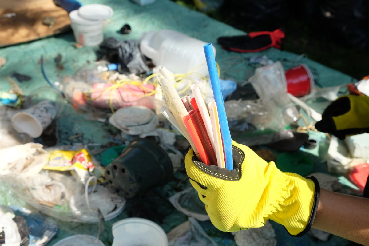 Plastic Clean-up & Brand Audit Activity in Montreal. © Greenpeace