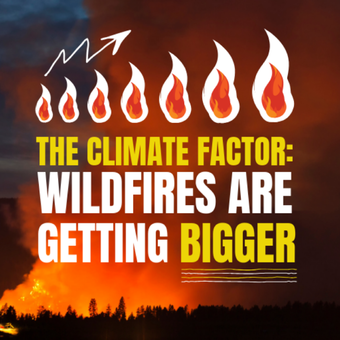 The climate actors: Wildfires are getting bigger