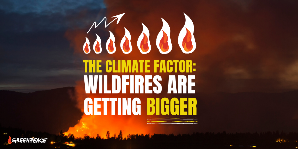 Climate Factor