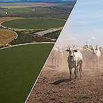 Cinq raisons de prendre soin de nos terres