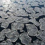 La crise climatique est une crise des océans