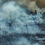 Forest Fires in Novo Progresso, Pará, Amazon (2019). © Victor Moriyama / Greenpeace
