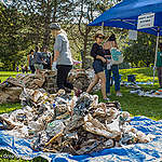 Join the global plastic pollution cleanup day and do a mini brand audit!