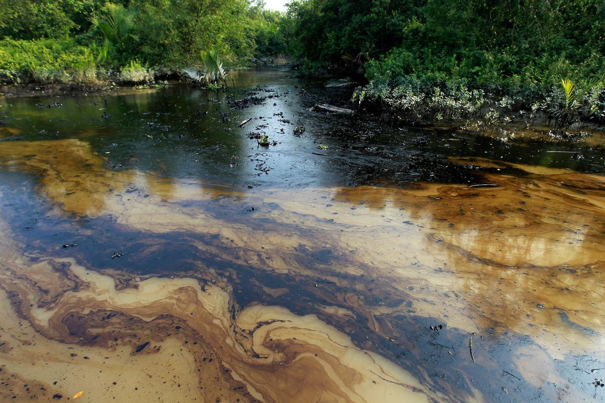 Oil Spill Aftermath in the Bangladesh Sundarbans. © Syed Zakir Hossain / Greenpeace