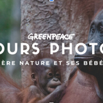 Le concours photo annuel de Greenpeace Canada est ouvert aux candidatures!