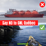 WHY YOU HAVE TO SAY #GNLNonMerci BEFORE SEPTEMBER 21 !