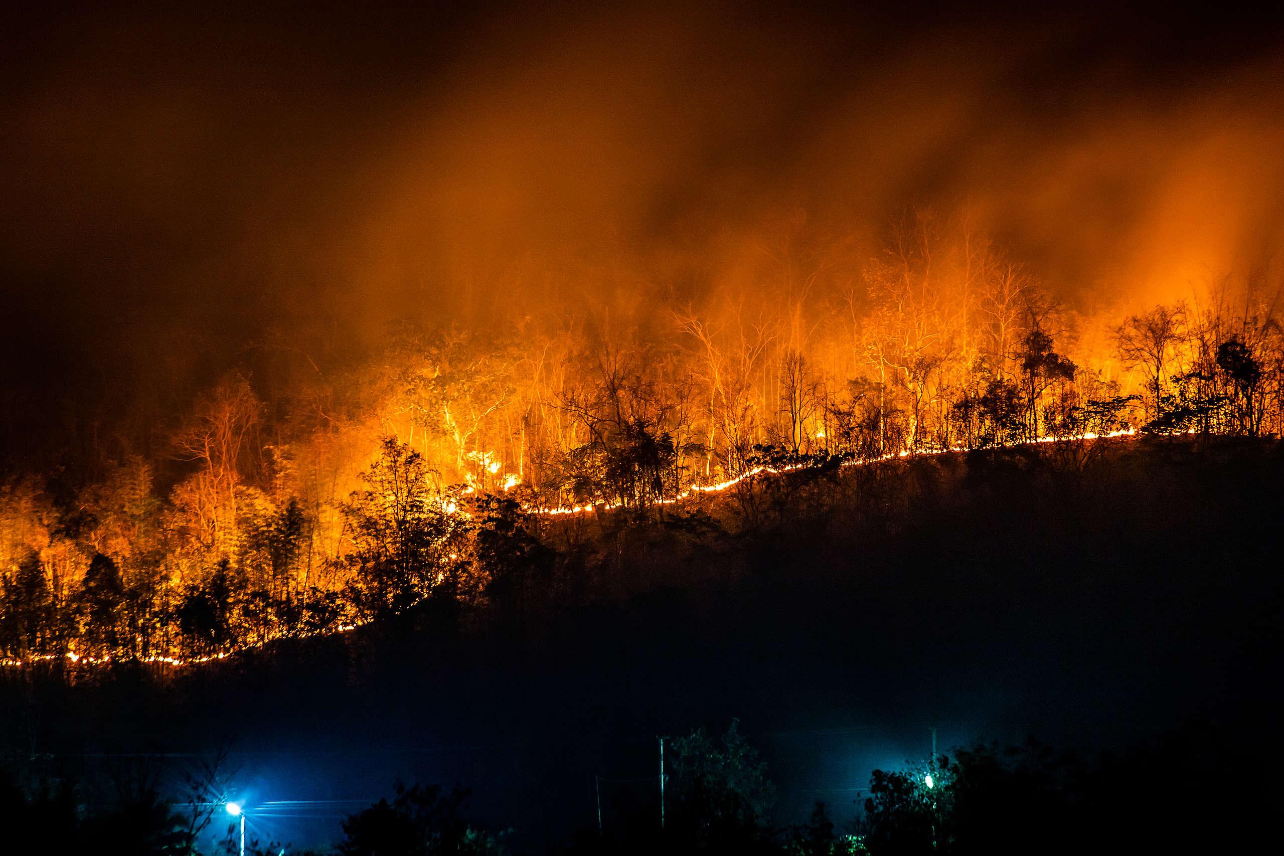 Burning Amazon
