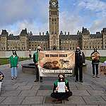 Greenpeace protesters in front of Parliament in Ottawa