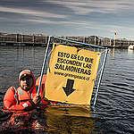 Greenpeace en alerta por proyecto salmonero en Ñuble