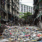 Greenpeace ante desolador informe del Banco Mundial