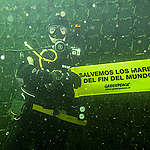Greenpeace responde a presidente de salmoneros de Magallanes