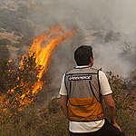 """Greenpeace e incendios en Aysén: """"El cambio climático actuará como nuevo combustible para la propagación de incendios en la Patagonia"""""""
