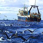 Científicos presentan innovador estudio para proteger los océanos