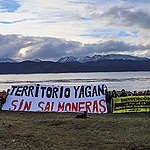 """Greenpeace sobre histórica caducidad de concesiones de Nova Austral:""""La impunidad de la industria salmonera en el Beagle ha terminado"""""""