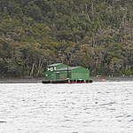 """Greenpeace critica a salmonera Nova Austral que se instaló sin autorización en el Beagle:  """"Es una toma ilegal de mar y el Estado los debe desalojar"""""""