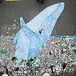 Un salto hacia un Valparaíso sin plásticos