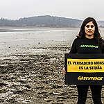 """Greenpeace y Festival de Viña del Mar:  """"El verdadero monstruo es la sequía y está en Peñuelas""""."""