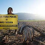 """Greenpeace y declaraciones de ministro Mañalich por falta de agua para enfrentar la pandemia: """"Es un derecho básico que no está reconociendo el Ministerio de Salud""""."""