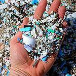 Alertan que todo el ciclo de vida del plástico es una amenaza para la salud humana