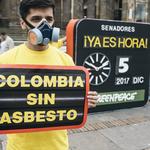 """""""La prohibición del asbesto es una victoria histórica y una muestra del empoderamiento ciudadano"""""""