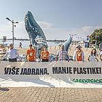 Kitovi u Istri: Vapaj iz morskih dubina