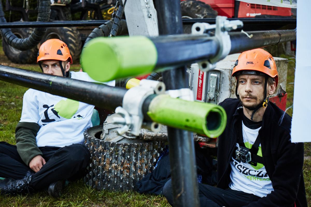 Blokáda kácení v Bělověžském pralese