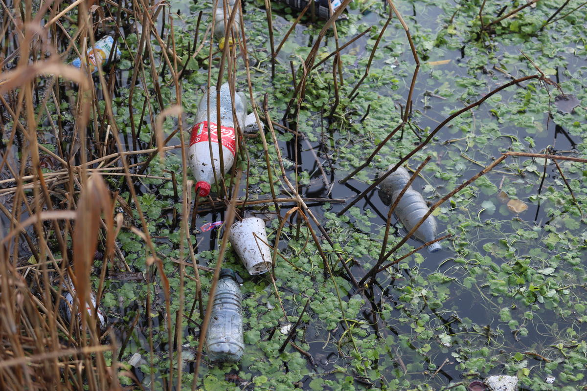 Plastic and Wildlife on the River Lea, UK. © Isabelle Povey / Greenpeace