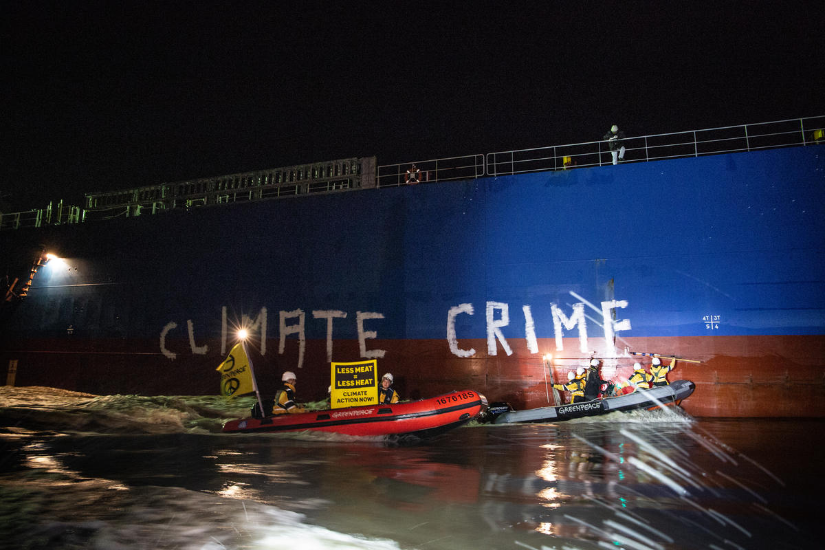 Protest against Ship with Soya Feed in Brake, Germany. © Maria Feck / Greenpeace
