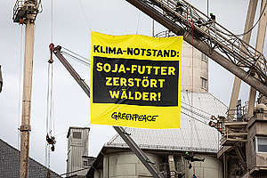 Protest against Ship with Soya Feed in Brake, Germany. © Daniel Müller / Greenpeace