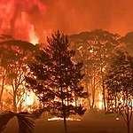 Pekelné australské Vánoce – klimatická krize v přímém přenosu, díl I.