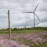 Danmark skal kæmpe på det grønne vinderhold i EU