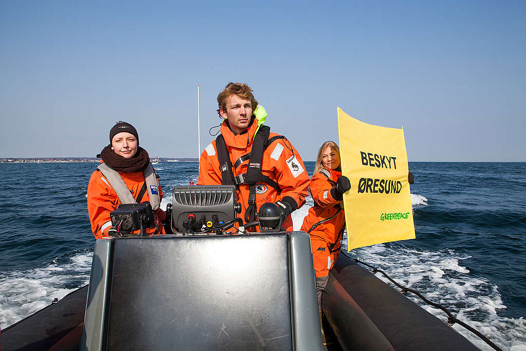 Greenpeace join flotilla for Oresund protection. © Alban Grosdidier