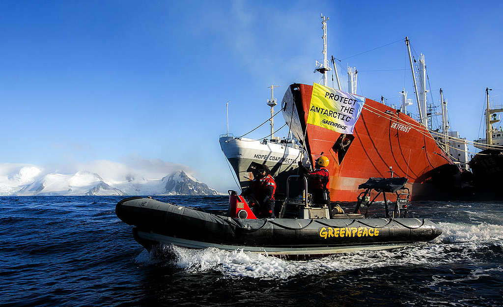 Greenpeace take Action against Antarctic Krill Industry. © Paul Hilton