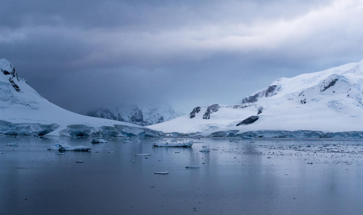 Paradise Bay in the Antarctic. © Paul Hilton