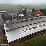 Greenpeace sender 42 meter langt budskab fra taget af svinefabrik