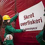 EU's fiskeriministre misser oplagt mulighed for at vende udviklingen for Østersøens pressede fiskebestande