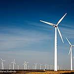 Greenpeace: Jiangsu a potential leader of China's 'energy revolution'