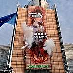 Activists hack EU Commission HQ with giant image of Amazon fires